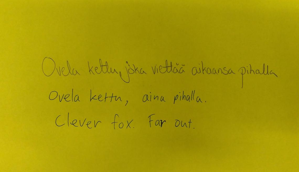 clever fox.jpg